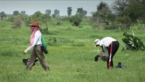 Zielona Afryka - przerwa w zdjęciach