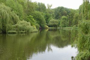 Ogród Dendrologiczny w Przelewicach